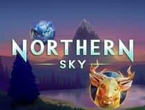 Northern Sky logo